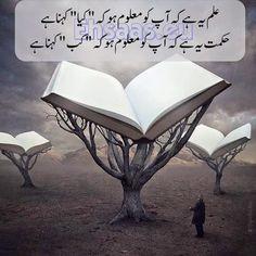 Ilm and hikmat