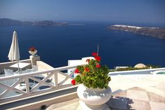 Santorini delights visitors with its luscious blend of volcanic geology, shimmery white Cycladic houses and dramatic natural landscapes. #Oia #Santorini #Cyclades #Greece #Monterrasol #travel #privatetours #customizedtours #multidaytours #roadtrips #travelwithus #tour #landscape #nature #island #sea #beach #sund #sand #beauty #beautiful #thisisgreece #spring #flowers #tourism #destination #whitewashed #architecture #caldera #mountains #blue Greek Islands, Day Tours, Geology, Greece, Tourism, Road Trip, Oia Santorini, Spring Flowers, Counting