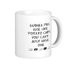Guinea pigs are like potato chips you can't have just one mug
