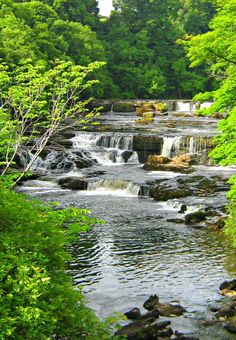 Just Pinned to Save Pins: Aysgarth Falls, North Yorkshire, England, UK. I have the most wonderful photos of my mum and dad here looking all. Yorkshire England, Yorkshire Dales, North Yorkshire, England Uk, Oxford England, Cornwall England, London England, Beautiful Waterfalls, Beautiful Landscapes
