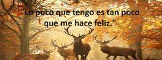 Yanet María: Frases