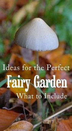 Fairy Gardens Archives - Page 79 of 866 - DIY Fairy Gardens