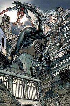 The Black Cat & Spider-Man