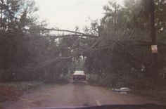 23 years ago today in Charlotte - My Hurricane Hugo photos (Mooresville: apartment, power lines) - North Carolina (NC) I Survived, Might Have, Charlotte Nc, South Carolina, Charleston, Nostalgia, Coast, Southern, Survival