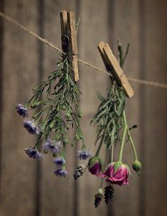 Logo na entrada de casa ou num corredor de passagem, surpreenda os convidados com um varal com flores. Escolha espécies que fiquem bonitas secas, como áster, rosa spray e lavanda, e aproveite-as depois em outros arranjos
