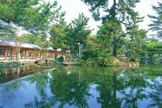 【岡山県 総社宮】地名の由来になったとされている社。国中の神社を巡拝する慣しの不便を省くため、平安末期に作られるようになったもの。こちらには324社の神々が祀られているそう。美しい日本庭園も必見。【問い合わせ先】●所在地:岡山県総社市総社2-18-1 #Okayama_Japan #Setouchi