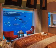 underwater suites at Atlantis, Dubai. this would be so awesome.