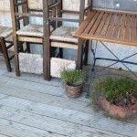 inverno verde Outdoor Furniture Sets, Outdoor Decor, Broccoli, Home Decor, Winter Green, Diary Book, Decoration Home, Room Decor, Home Interior Design
