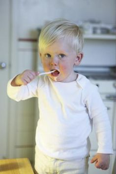 healthy foods high in fat for toddlers