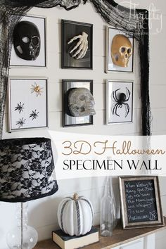 3D Halloween specimen gallery wall using dollar store frames and finds. Great last minute Halloween decorating idea! by mari