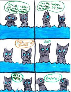 Warrior Cats Comics Funny | Persian Kitten 2015