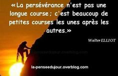 La persévérance....