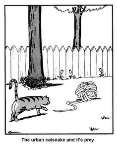 """""""The Far Side"""" by Gary Larson. Far Side Cartoons, Far Side Comics, Funny Cartoons, Gary Larson Far Side, The Far Side, I Love To Laugh, Calvin And Hobbes, Twisted Humor, Grumpy Cat"""