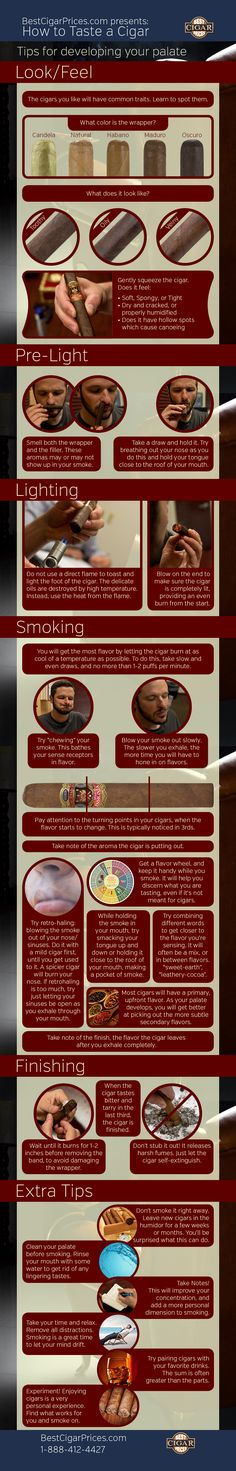 Cigar How to Taste a Cigar & Flavor Wheel (Infographics) - Buy Cigars Online Good Cigars, Cigars And Whiskey, Cuban Cigars, Bourbon Whiskey, Cigar Humidor, Cigar Bar, Cigar Club, Cigar Boxes, Buy Cigars Online