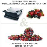 Driscolls Contests Win Breville Sandwich Grill or Visa Card