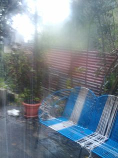 Cuando la lluvia cae en mi patio trasero.