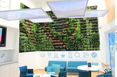 #verticalgarden at a National Bank of Greece branch in Thessaloniki