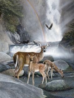 laminas de todo tipo de animales (pág. 13) | Aprender manualidades es facilisimo.com