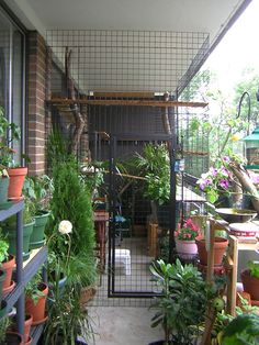 Install your catio with lots of cat-safe plants to give your cat the feeling of venturing in the wilderness.