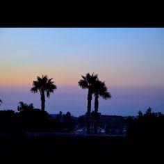 """221 Synes godt om, 1 kommentarer – Sandra Schjerning (@sandraschjerning_) på Instagram: """"Night view from the hotel #sunset#kos#view#palms#koslife"""""""