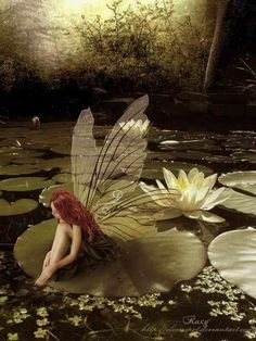 Fairy with long red hair sitting on a lily pad.looks like my niece colbie!