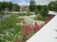 LILA Winner: Saint Ouen, Park Of The Docks by Agence Ter «  Landscape Architecture Works | Landezine