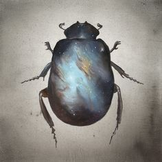 Scarab print, bug print, insect print, artwork