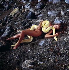 Nude sherlyn chopra standing nude