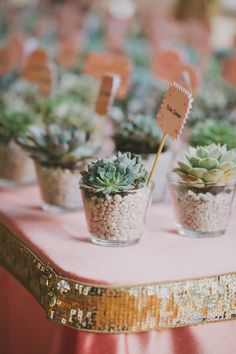 #Favors | Like the mix of rustic #succulents and a #sequin border on the table | See the wedding on SMP: http://www.stylemepretty.com/2013/04/26/la-quinta-wedding-from-fondly-forever-photography/ Fondly Forever Photography