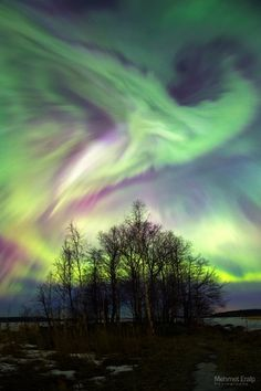 March aurora activity in Finland Mother Earth, Mother Nature, Beautiful World, Beautiful Places, Cool Pictures, Cool Photos, Sky Watch, Earth Wind & Fire, Star Painting