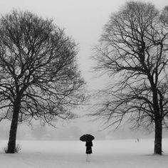 Blacket  by Janos Barberis, via 500px