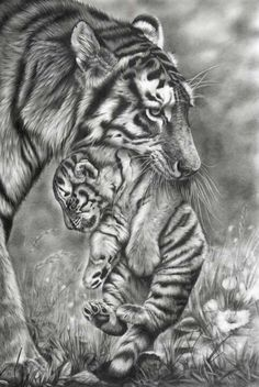 Tiger Mother and Cub by Peter Williams