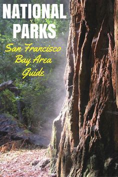 Did you know that the National Parks Service manages nearly a dozen historical and ecological sites right in the heart of the San Francisco Bay Area? Find out where you can explore National Parks and National Monuments close to home in this Northern California guide.