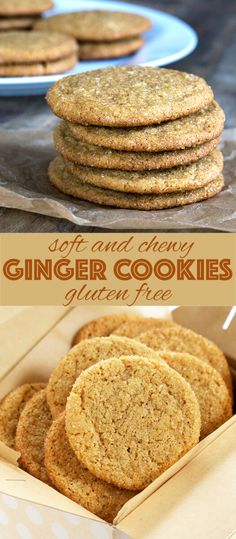Get this tested, easy-to-follow recipe for soft and chewy gluten free ginger cookies. Simple slice-and-bake cookies that are perfect for the holidays!