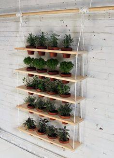 Guia de jardin. Blog de jardinería.: Estanterías colgantes para cultivar muchas plantas en poco espacio {Paso a paso}