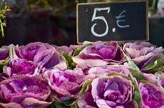 Paris Farmer's Markets