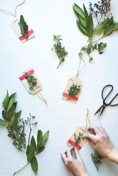 Making Balsa Wood Gift Tags with Herbs