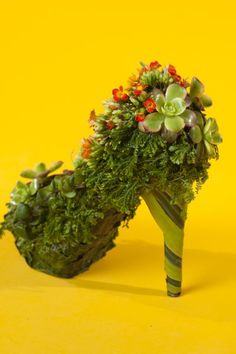 botanical shoe with kalanchoe , Françoise Weeks - Joni Photo Flower Shoes, Flower Bag, Flower Dresses, Muses Shoes, Arte Floral, Floral Fashion, Shoe Art, Succulents Garden, Garden Art