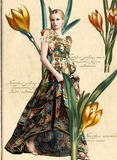 Look of the Day Dolce&Gabbana Spring Summer 2014 Womenswear Sicilian Print Chiffon Floor Length Dress