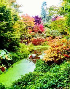 Yao Japanese Garden in Bellevue Botanical Garden