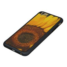 A bright yellow sunflower with detailed center.