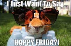I Just Want to Say... Happy Friday.