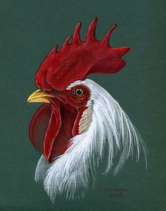 Leghorn Rooster  by Pat Latas