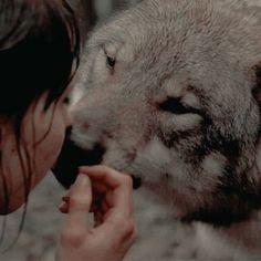 Anabel with Ethan's wolf House Stark, Story Inspiration, Character Inspiration, Half Elf, The Ancient Magus Bride, Merian, She Wolf, Greek Mythology, Roman Mythology