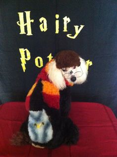 Harry Potter Poodle :)