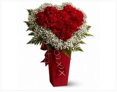 FDH Heart and Soul :- Send someone this soulful floral gift and there'll be no mistaking that you're giving them your heart! A heart made entirely of red carnations is nestled in a cloud of baby's breath and ferns and presented in a tall red vase adorned with a pretty ribbon.