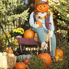 Pumpkin Patch Scarecrow  What do you get when you combine a jack-o'-lantern with a scarecrow? An easy-to-make fall decoration that kids will love!