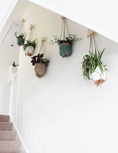 Best indoor living wall plants of hanging planters growing spaces home improvement . Plantas Indoor, Hanging Planters, Hanging Plant Wall, Indoor Hanging Baskets, Planter Pots, Hang Plants On Wall, Plants On Walls, Indoor Plant Hangers, Wall Mounted Planters