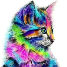 DIY Diamond Painting Cross Stitch Kit  Rainbow Kitten