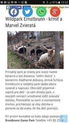 Wild park Ernstbrunn